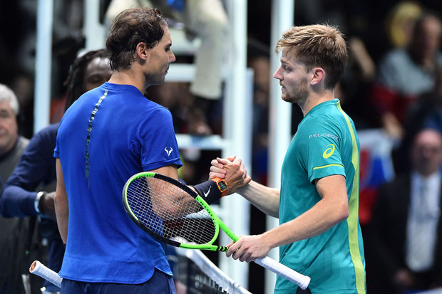 david goffin actualité